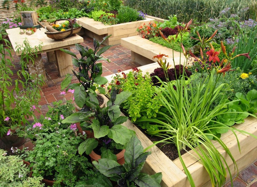 Raised gardening beds made from untreated 'green' oak being used to grow fresh, food-mile-free food.