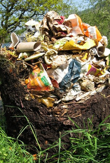 Household waste (browns) can be mixed with garden waste (greens) in a 'cool' compost bin that slowly breaks down into soil-enriching compost.