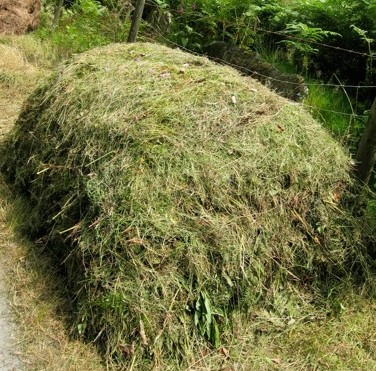 A 'hot' compost heap made from a mixture of 'greens', such as fresh bracken and other leafy weeds, and 'browns', such as straw or spoiled hay or silage.
