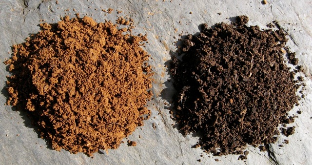 Soil before (left) and after (right) being improved with home-made garden compost.