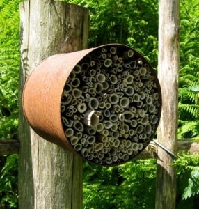 Solitary bee nest box made for free using found and recycled materials.