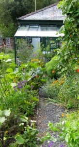 Gardening and environment writer and author John Walker's low-cost, earth-friendly garden in summer.