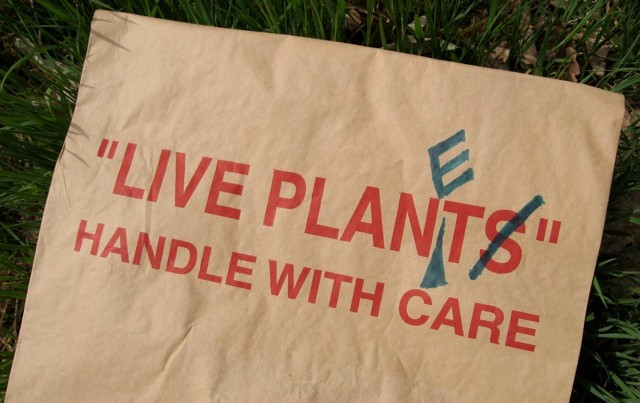 We need to learn how to handle our planet with care, as well as our plants.