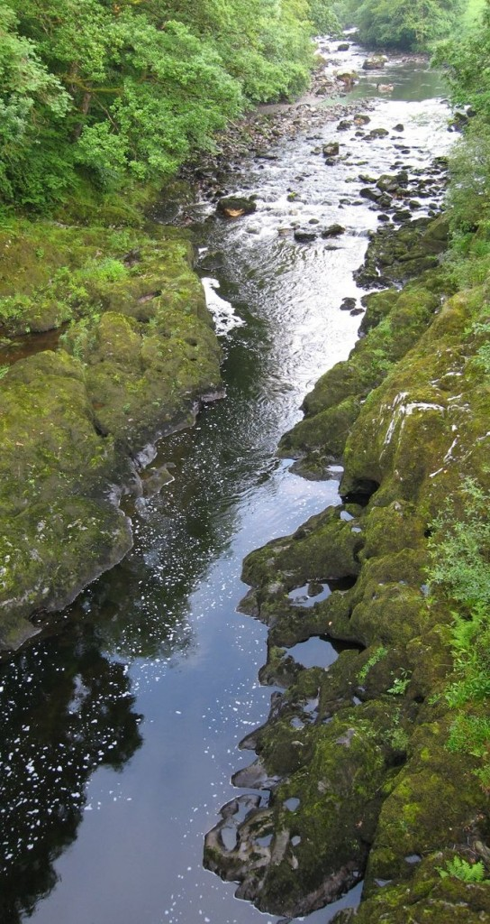 When rivers run low there are all kinds of different impacts on living ecosystems.