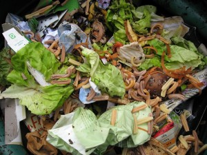When garden and kitchen waste rots down in a compost bin it releases only the carbon it absorbed while growing (including the paper made from trees).