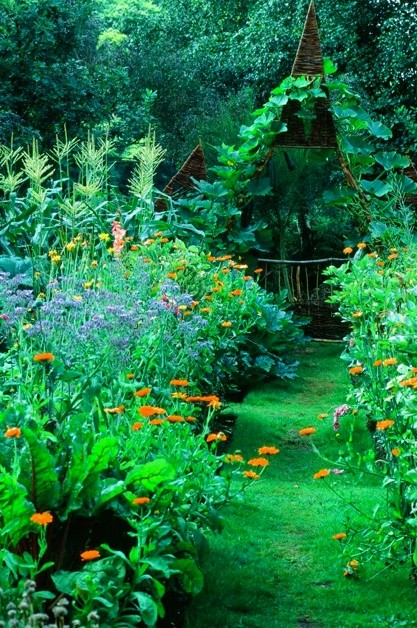 Peter Woollam's organic garden in Cheshire exudes the love and attention it gets, and is packed with ideas and inspiration. It opens regularly each year in late summer.