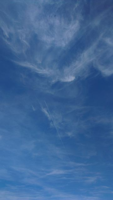 Reducing energy use is one way to curb our carbon output. These human-made clouds form out of the exhaust contrails of aircraft – possibly those flying gardeners away on a gardening holiday…