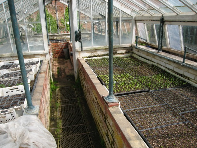 woodchip-gardening-tolhurst-organic-grower